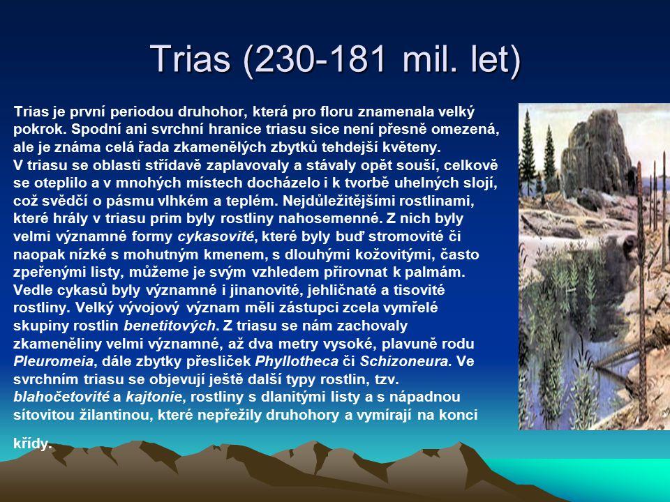 Trias (230-181 mil. let)