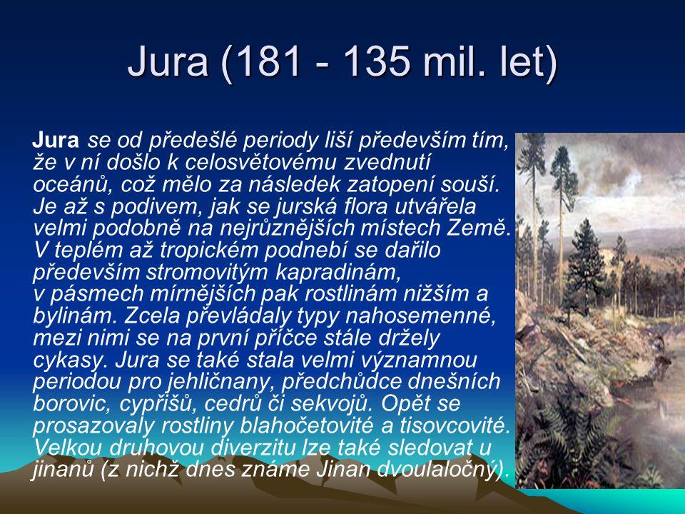 Jura (181 - 135 mil. let)