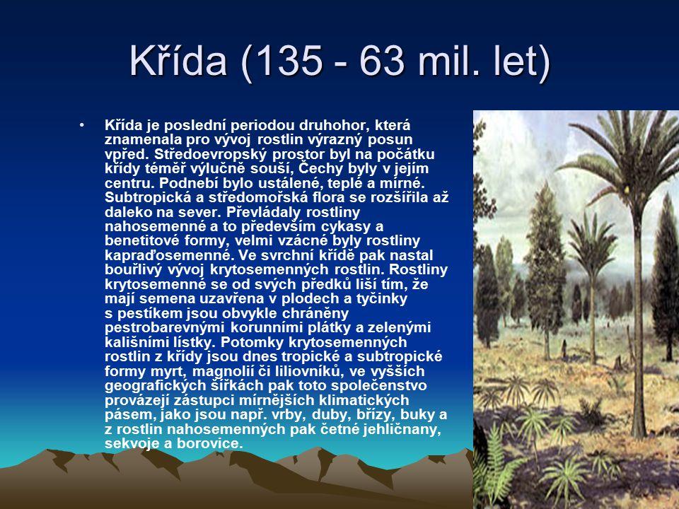 Křída (135 - 63 mil. let)