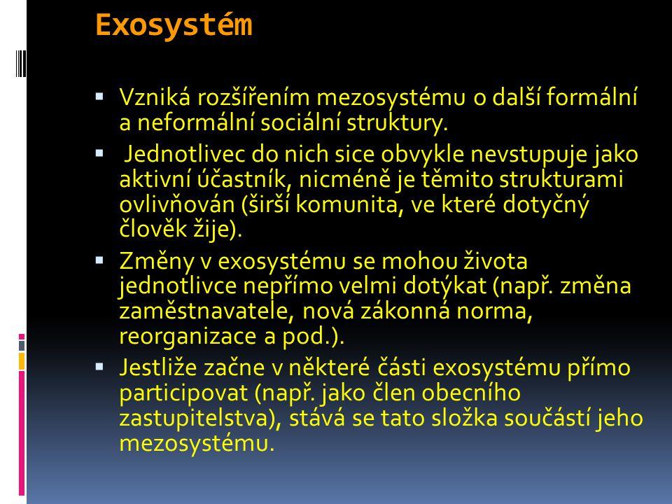 Exosystém Vzniká rozšířením mezosystému o další formální a neformální sociální struktury.
