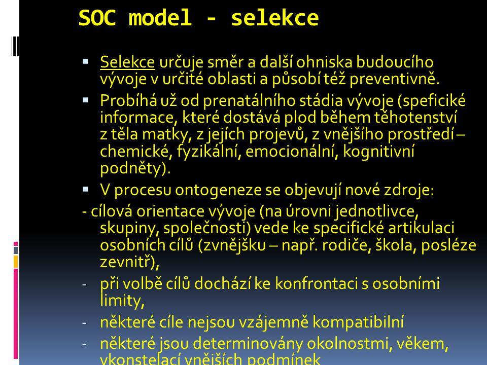 SOC model - selekce Selekce určuje směr a další ohniska budoucího vývoje v určité oblasti a působí též preventivně.