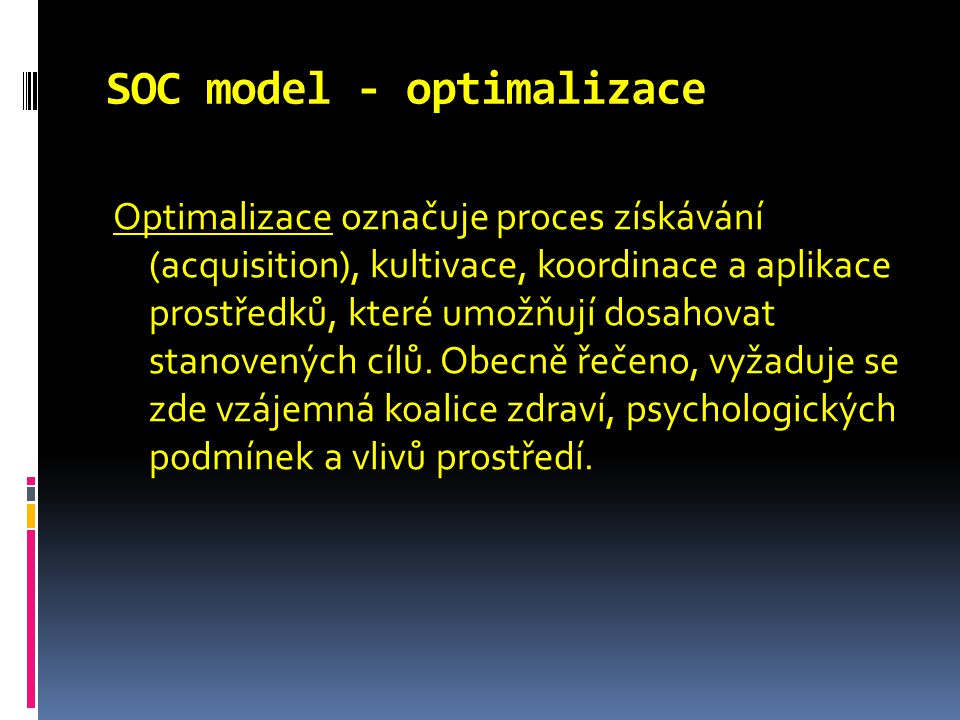 SOC model - optimalizace