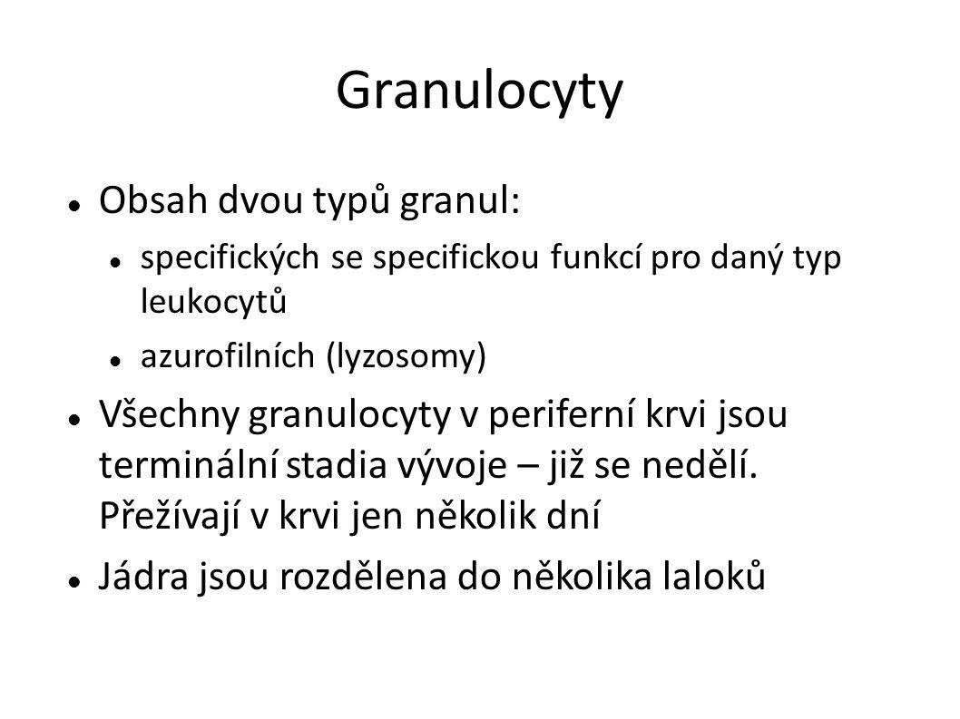 Granulocyty Obsah dvou typů granul: