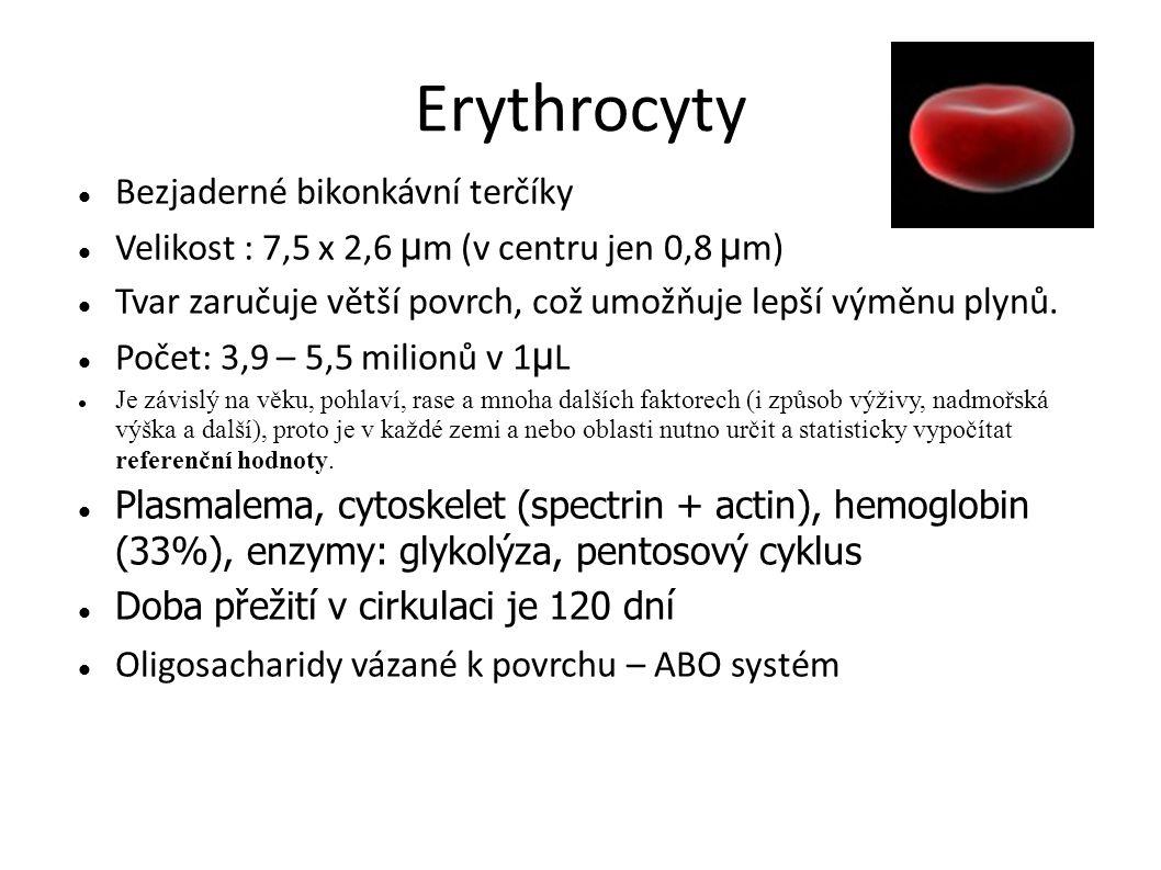 Erythrocyty Bezjaderné bikonkávní terčíky