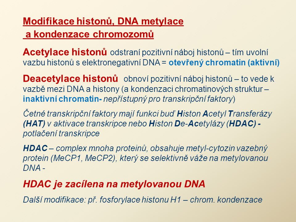 Modifikace histonů, DNA metylace a kondenzace chromozomů