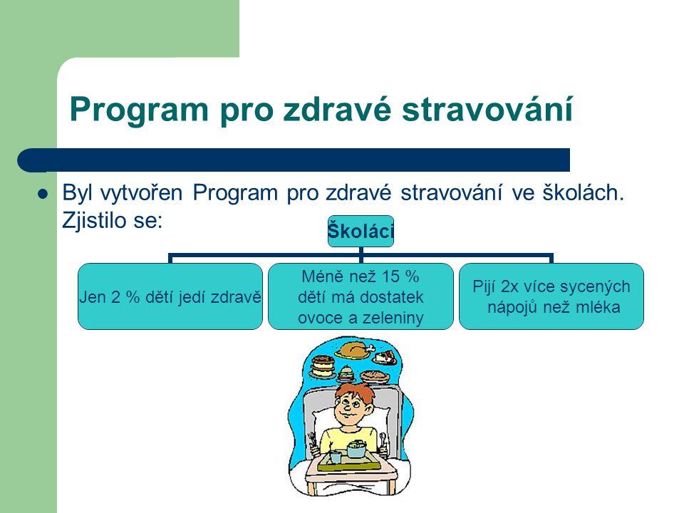 Program pro zdravé stravování