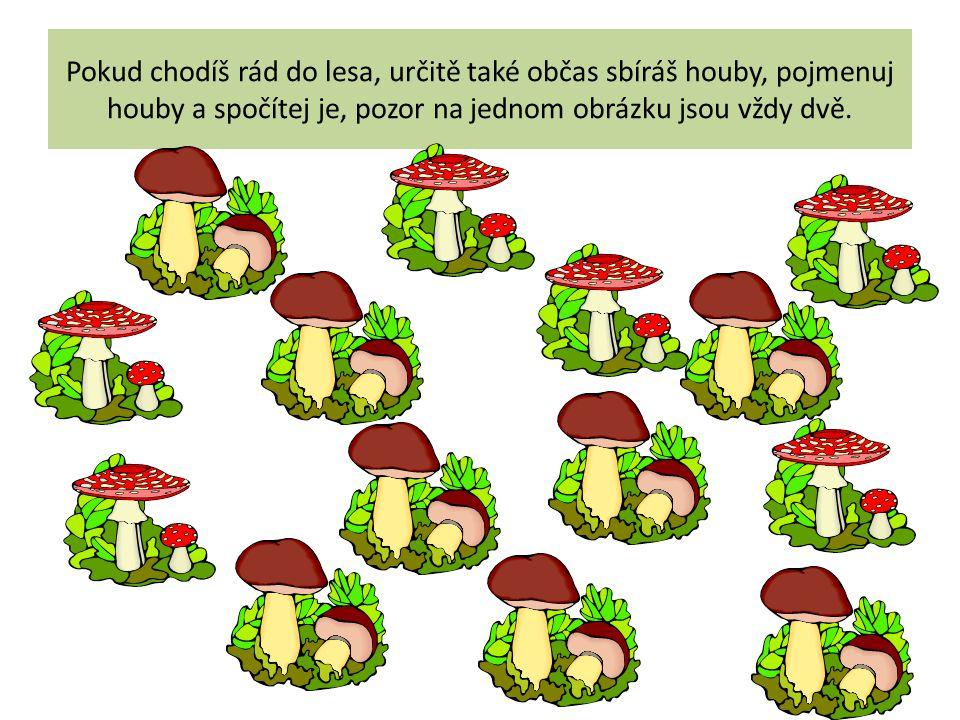 Pokud chodíš rád do lesa, určitě také občas sbíráš houby, pojmenuj houby a spočítej je, pozor na jednom obrázku jsou vždy dvě.