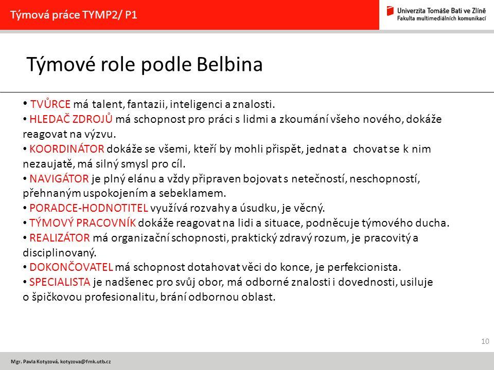 Týmové role podle Belbina