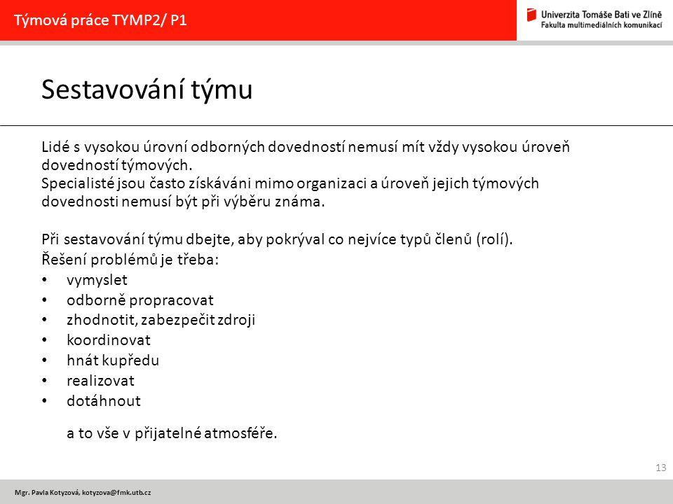 Sestavování týmu Týmová práce TYMP2/ P1