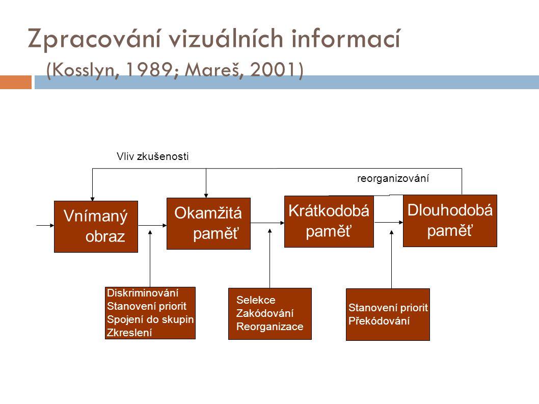 Zpracování vizuálních informací (Kosslyn, 1989; Mareš, 2001)