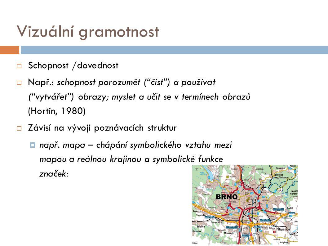 Vizuální gramotnost Schopnost /dovednost