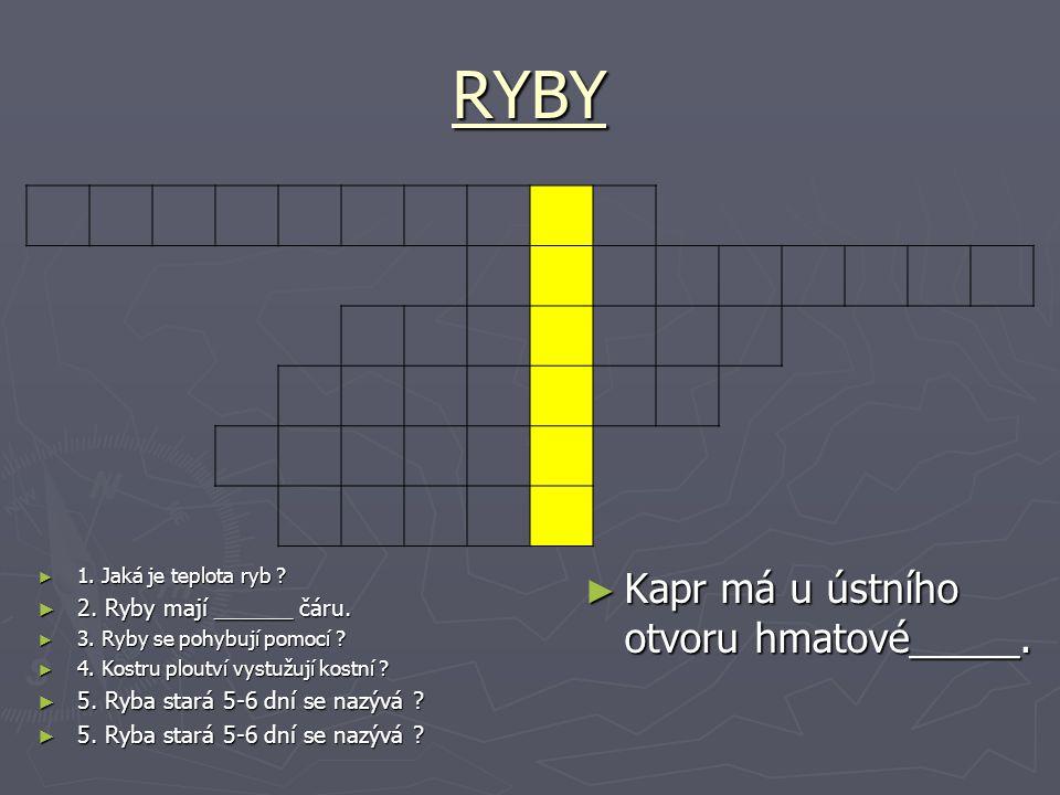 RYBY Kapr má u ústního otvoru hmatové_____. 2. Ryby mají ______ čáru.
