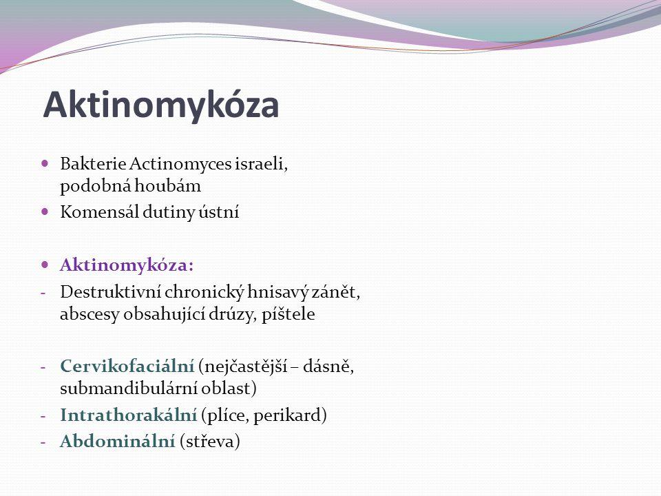 Aktinomykóza Bakterie Actinomyces israeli, podobná houbám