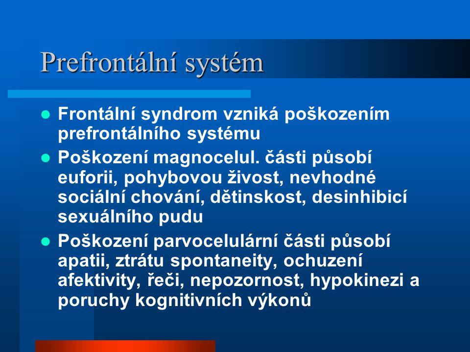 Prefrontální systém Frontální syndrom vzniká poškozením prefrontálního systému.