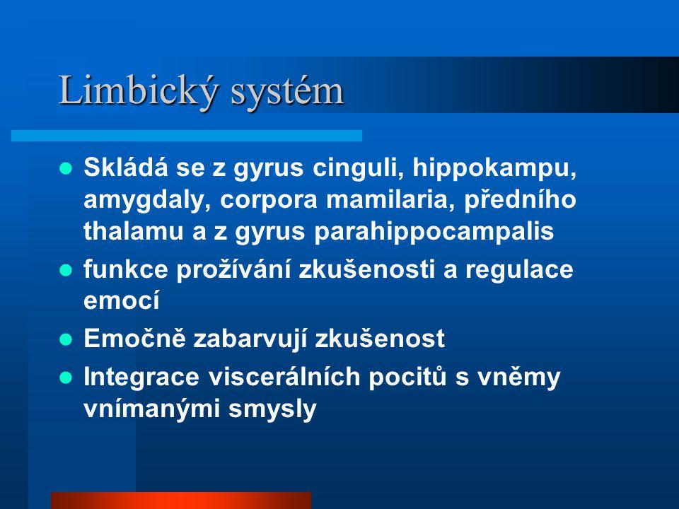 Limbický systém Skládá se z gyrus cinguli, hippokampu, amygdaly, corpora mamilaria, předního thalamu a z gyrus parahippocampalis.