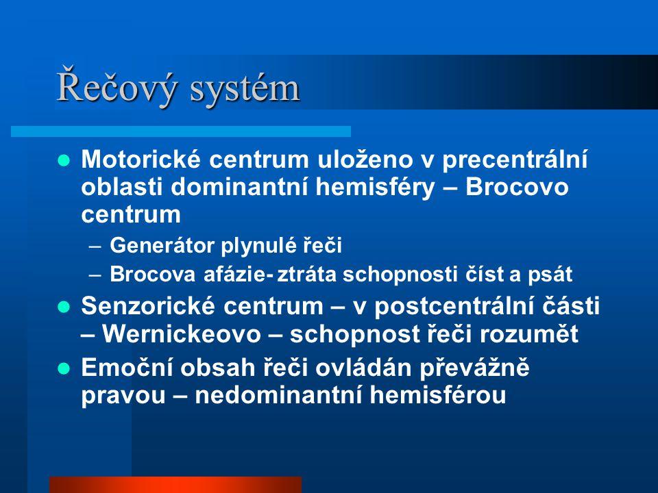 Řečový systém Motorické centrum uloženo v precentrální oblasti dominantní hemisféry – Brocovo centrum.