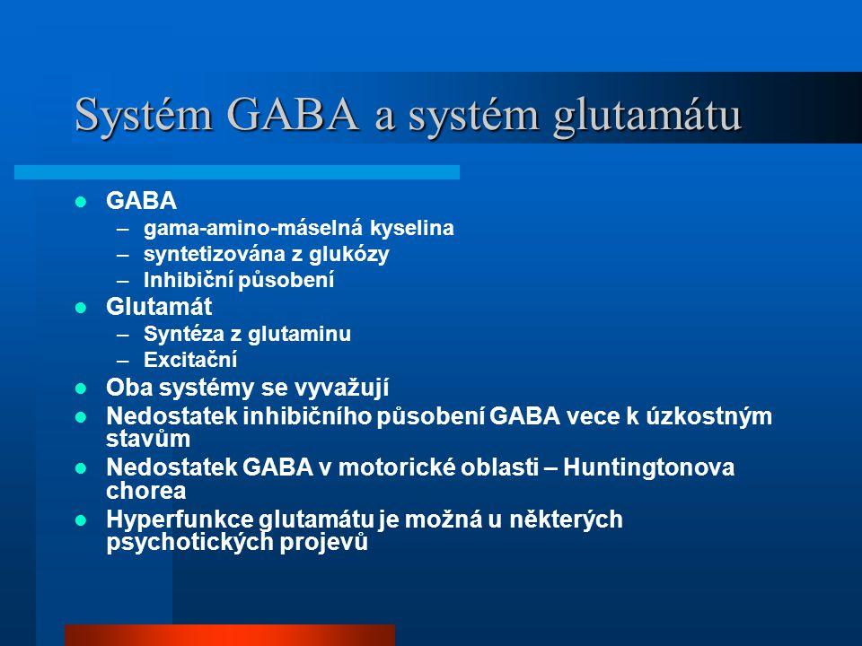 Systém GABA a systém glutamátu