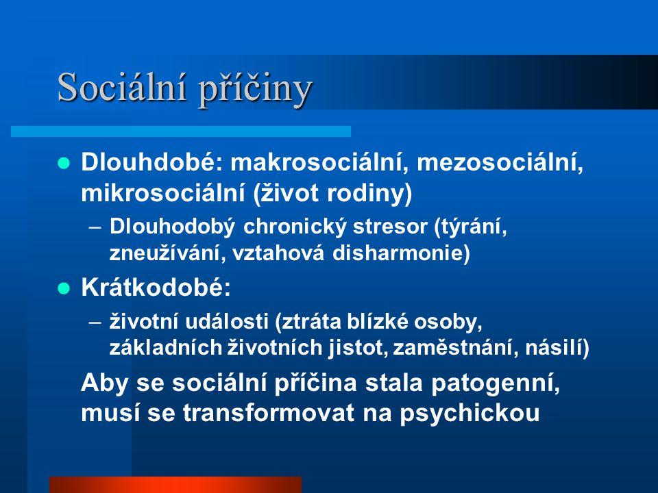 Sociální příčiny Dlouhdobé: makrosociální, mezosociální, mikrosociální (život rodiny)