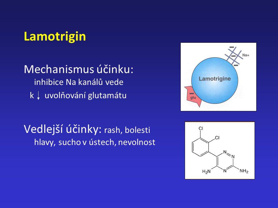 Lamotrigin Mechanismus účinku: inhibice Na kanálů vede