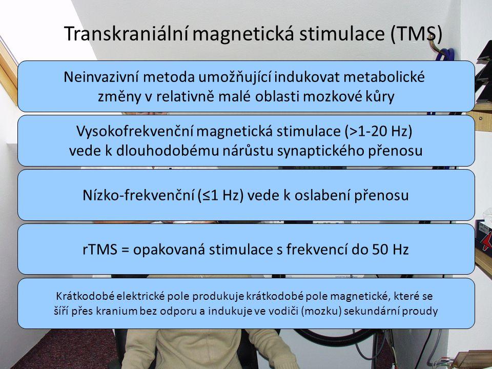 ; Transkraniální magnetická stimulace (TMS)