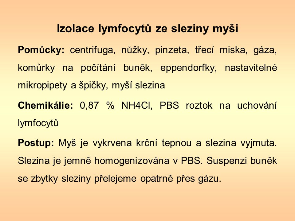 Izolace lymfocytů ze sleziny myši