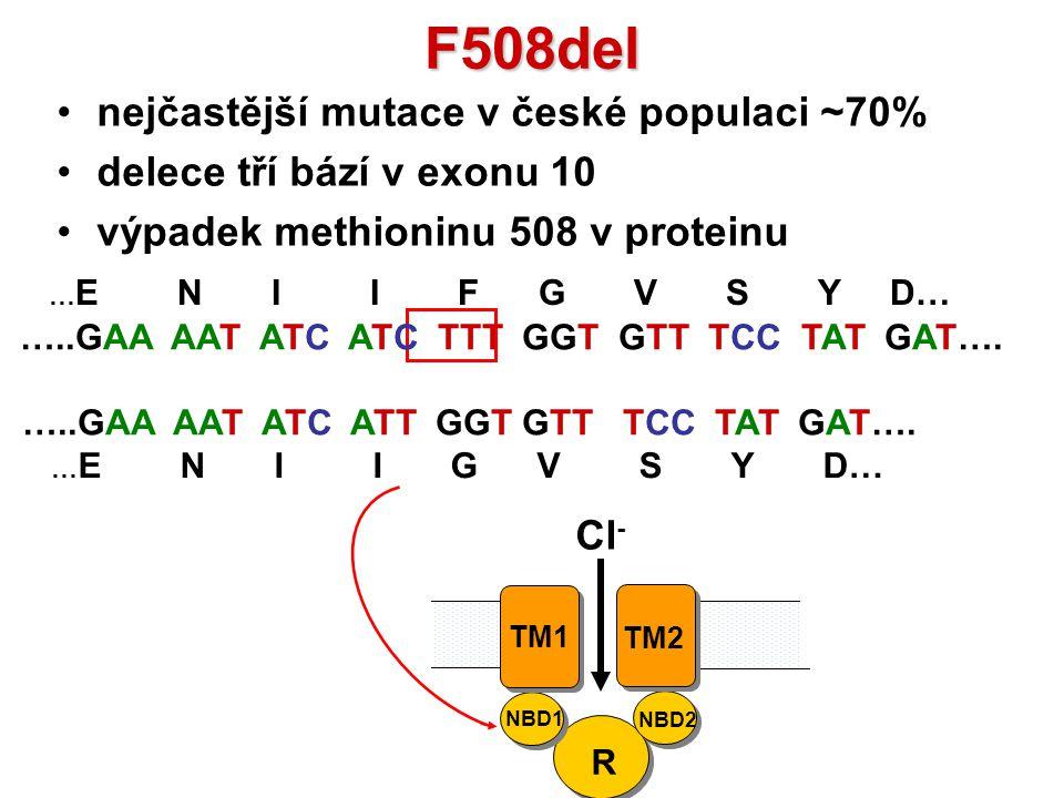 F508del nejčastější mutace v české populaci ~70%