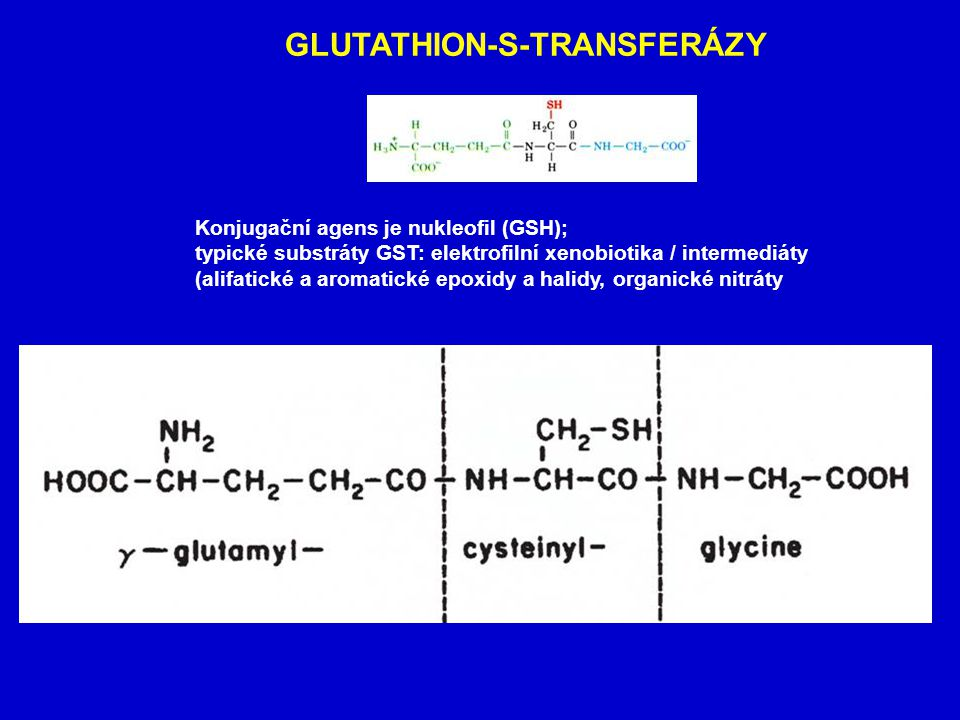 GLUTATHION-S-TRANSFERÁZY