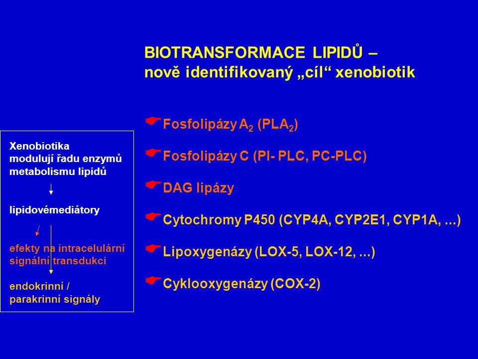"""BIOTRANSFORMACE LIPIDŮ – nově identifikovaný """"cíl xenobiotik"""