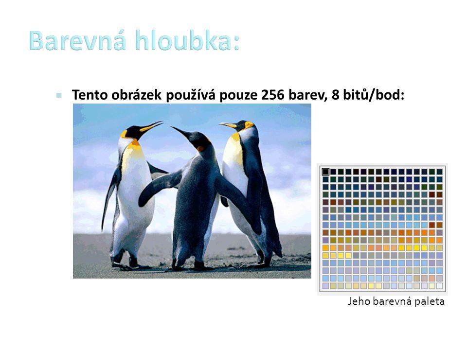 Barevná hloubka: Tento obrázek používá pouze 256 barev, 8 bitů/bod: