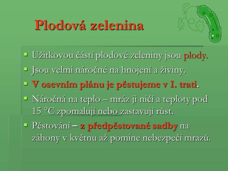 Plodová zelenina Užitkovou částí plodové zeleniny jsou plody.