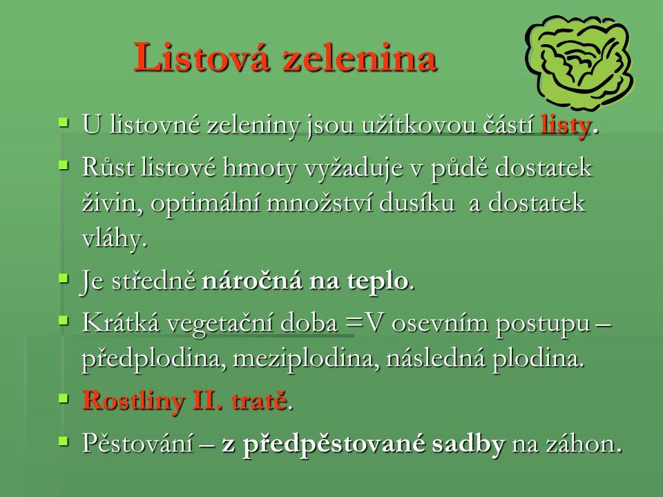 Listová zelenina U listovné zeleniny jsou užitkovou částí listy.