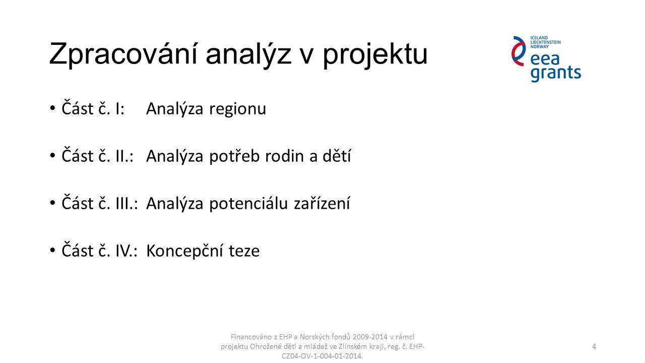 Zpracování analýz v projektu