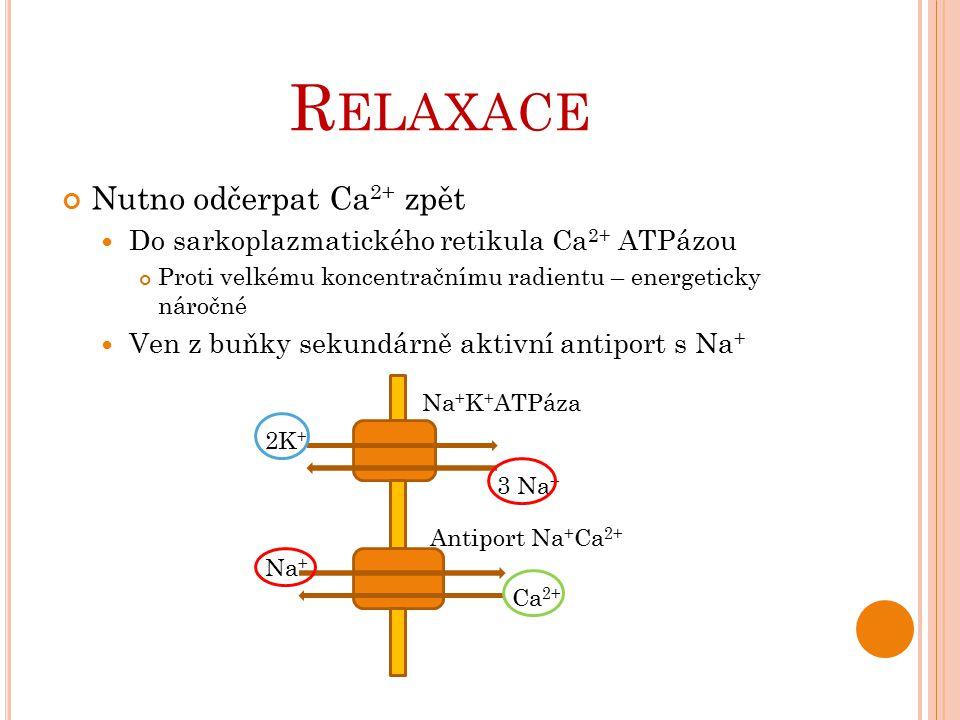 Relaxace Nutno odčerpat Ca2+ zpět