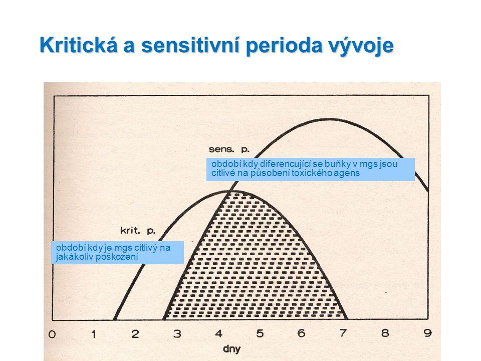 Kritická a sensitivní perioda vývoje