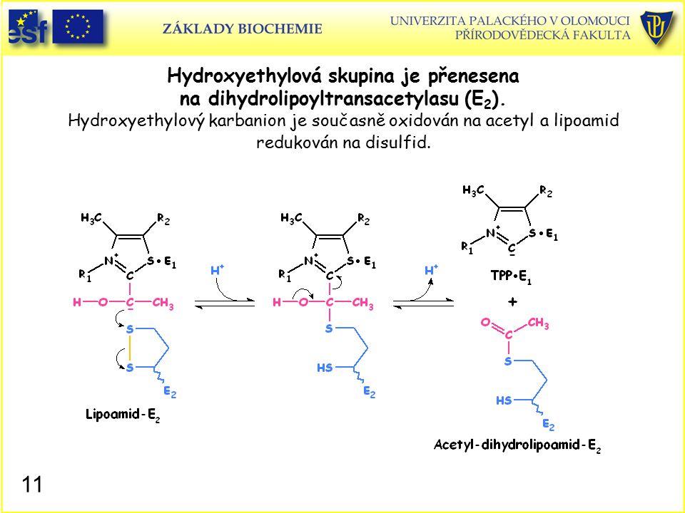 Hydroxyethylová skupina je přenesena na dihydrolipoyltransacetylasu (E2). Hydroxyethylový karbanion je současně oxidován na acetyl a lipoamid redukován na disulfid.