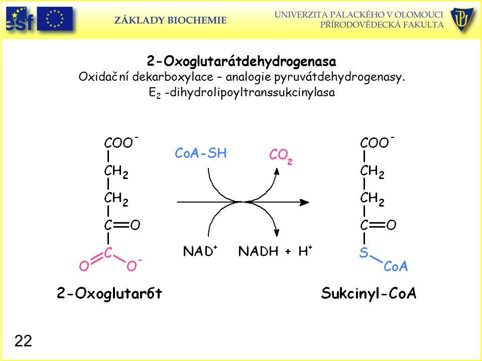 2-Oxoglutarátdehydrogenasa Oxidační dekarboxylace – analogie pyruvátdehydrogenasy. E2 -dihydrolipoyltranssukcinylasa