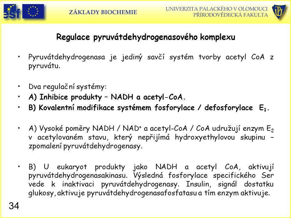 Regulace pyruvátdehydrogenasového komplexu
