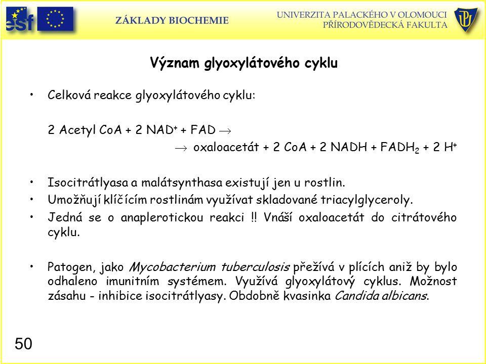 Význam glyoxylátového cyklu
