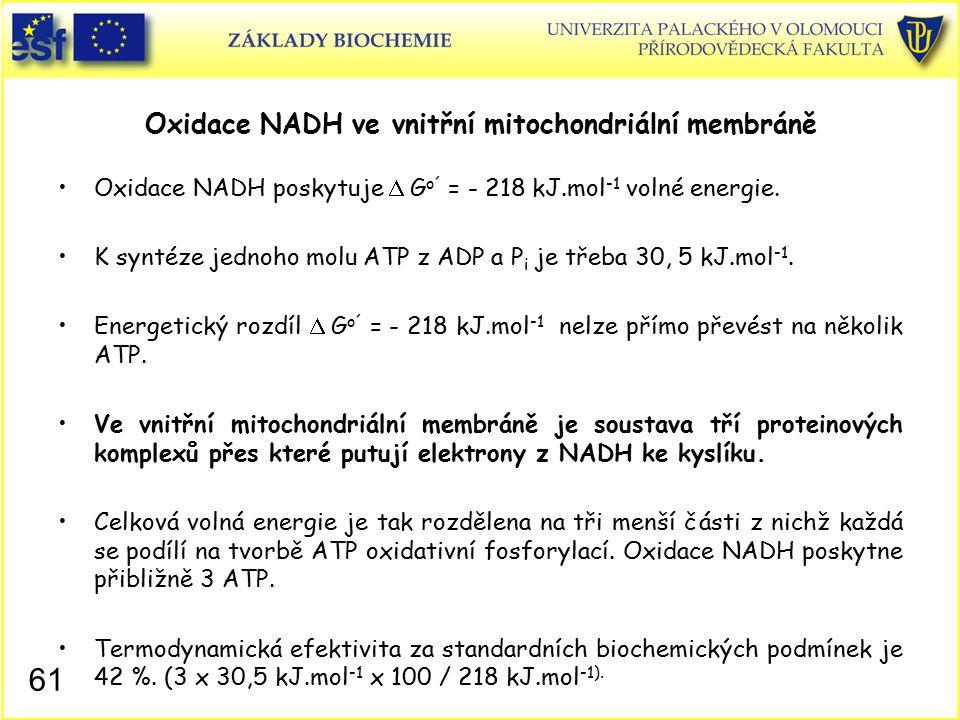 Oxidace NADH ve vnitřní mitochondriální membráně