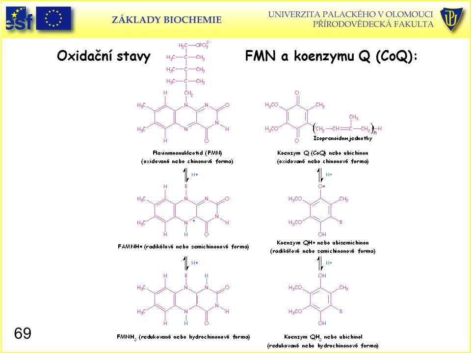 Oxidační stavy FMN a koenzymu Q (CoQ):