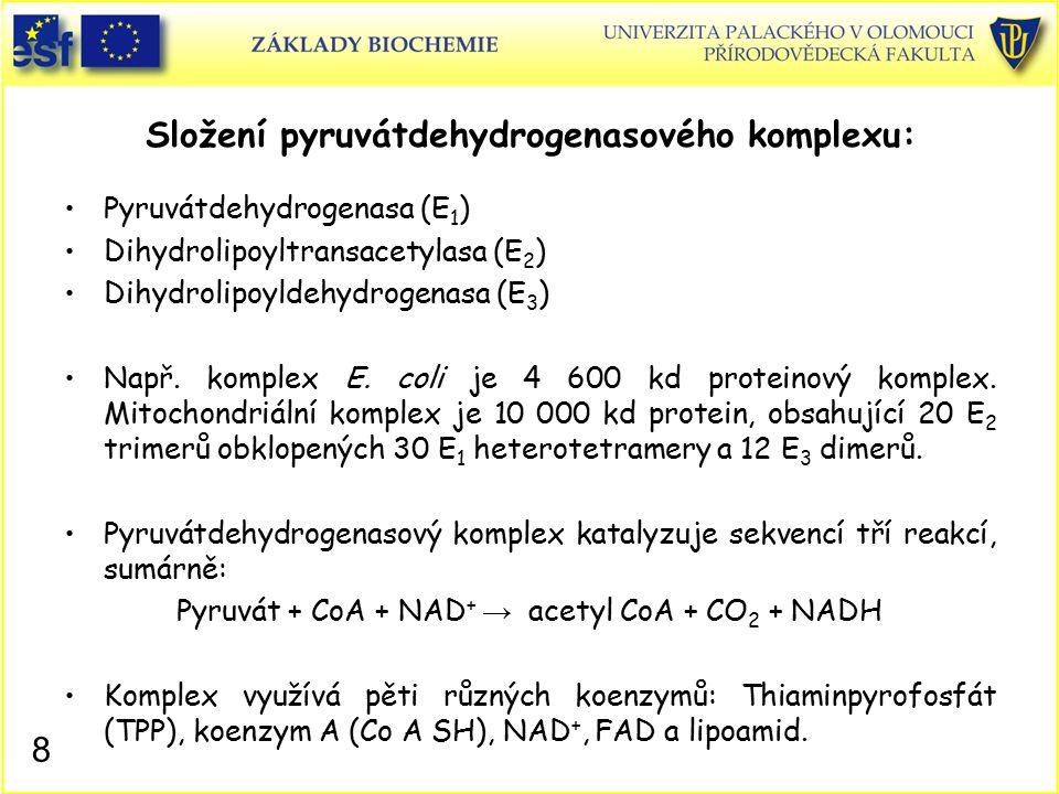 Složení pyruvátdehydrogenasového komplexu: