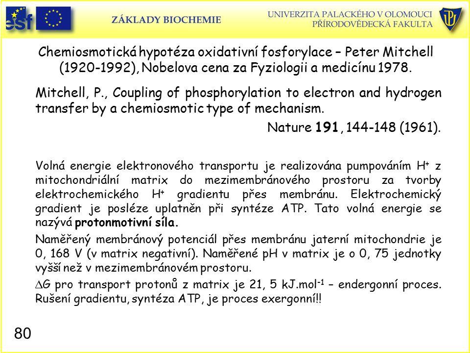 Chemiosmotická hypotéza oxidativní fosforylace – Peter Mitchell (1920-1992), Nobelova cena za Fyziologii a medicínu 1978.