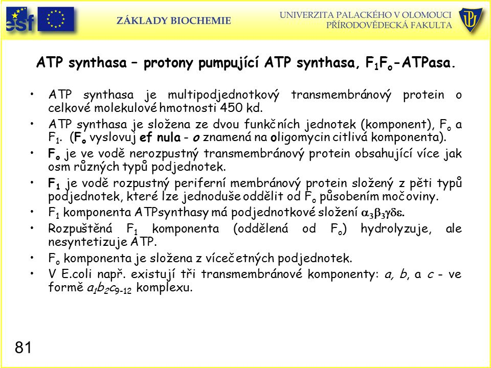 ATP synthasa – protony pumpující ATP synthasa, F1Fo-ATPasa.