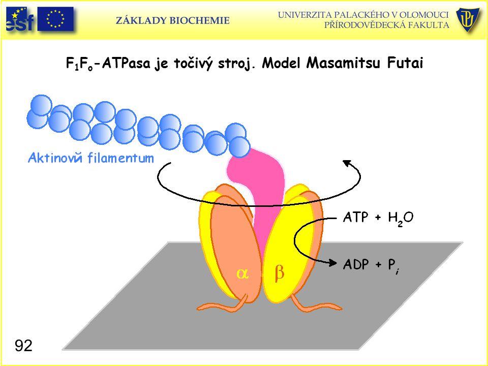 F1Fo-ATPasa je točivý stroj. Model Masamitsu Futai