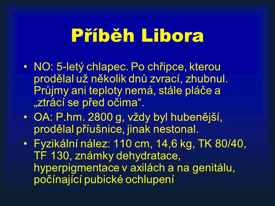 Příběh Libora