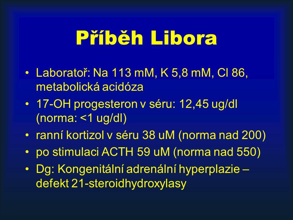Příběh Libora Laboratoř: Na 113 mM, K 5,8 mM, Cl 86, metabolická acidóza. 17-OH progesteron v séru: 12,45 ug/dl (norma: <1 ug/dl)