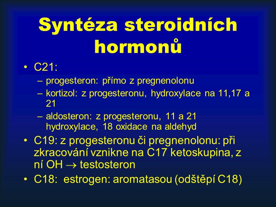 Syntéza steroidních hormonů