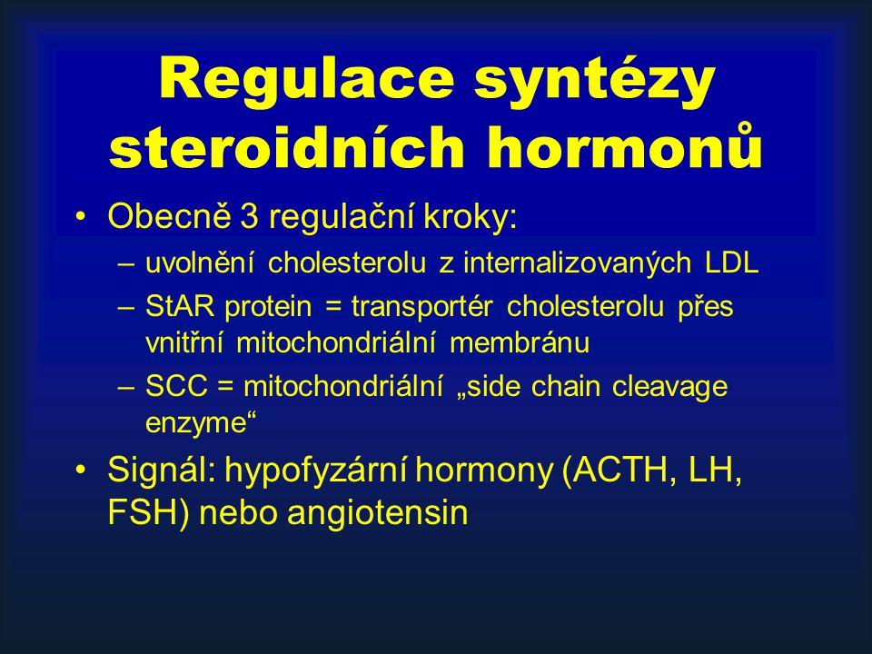 Regulace syntézy steroidních hormonů