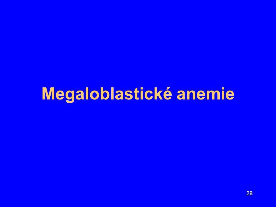 Megaloblastické anemie