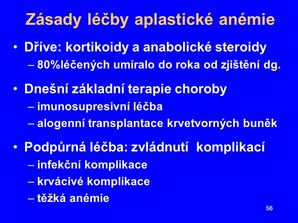 Zásady léčby aplastické anémie